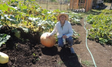 Teresa Matteson with a squash at Oak Creek Center for Urban Horticulture