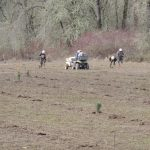 Crews dig holes and plant trees and shrubs at Half Moon Bend.