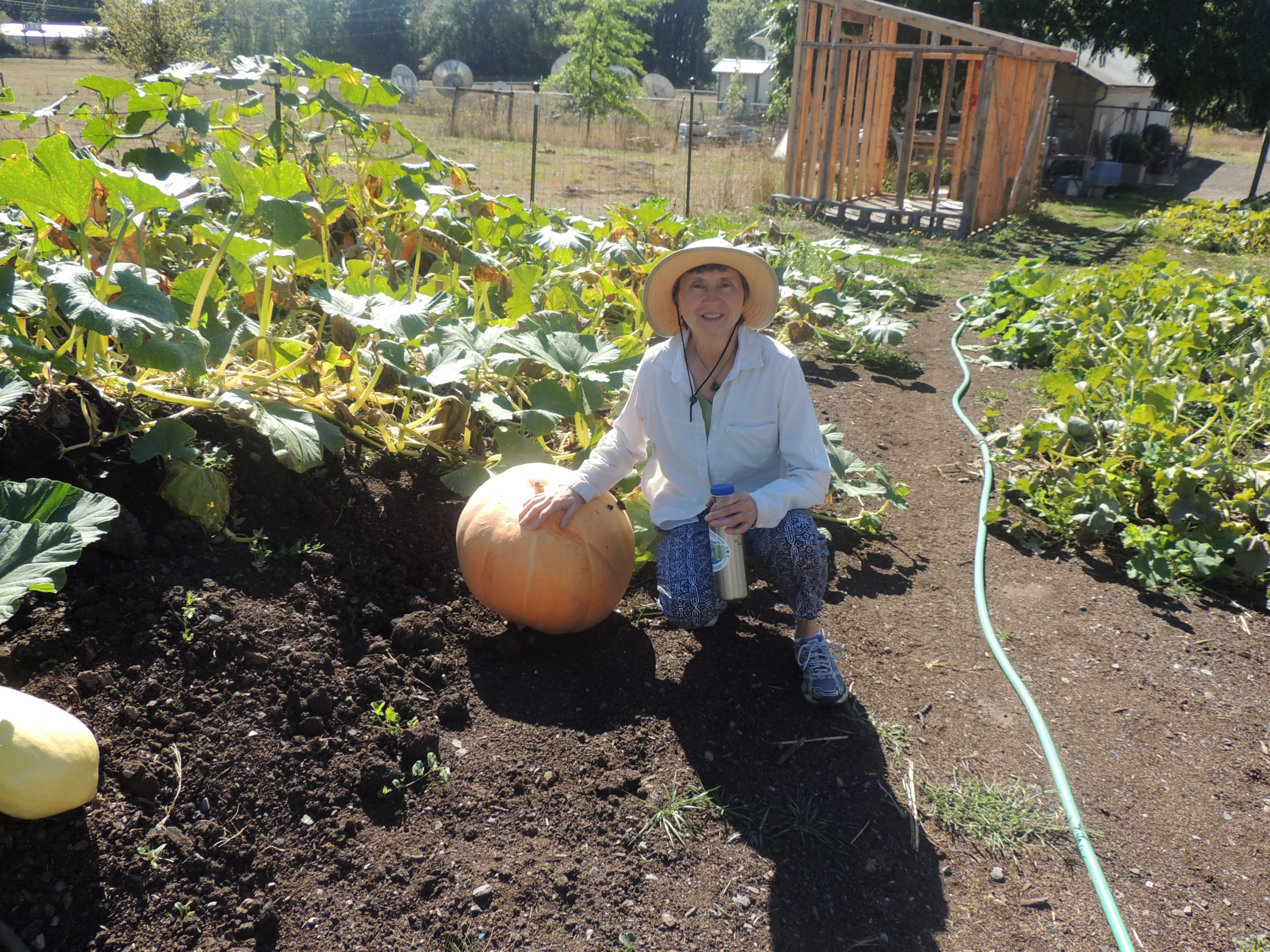 Teresa Matteson with a squash at Oak Creek Center for Urban Horticulture © H. Keirstead. Keirstead