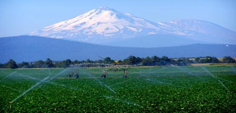 irrigation photo from NRCS website