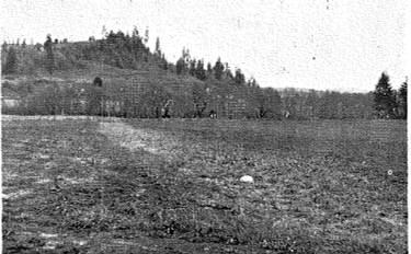 A restored field without erosion gullies.