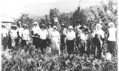 OR Apple Company apple pickers with hats.
