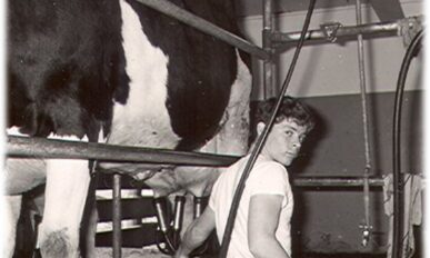 young man operating a milking machine that is hooked up to a cow.