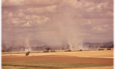 grass stubble being burned in Willamette Valley