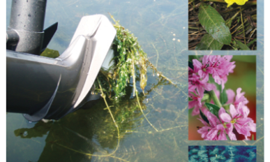 front cover of the 2020 guide to aquatic plants