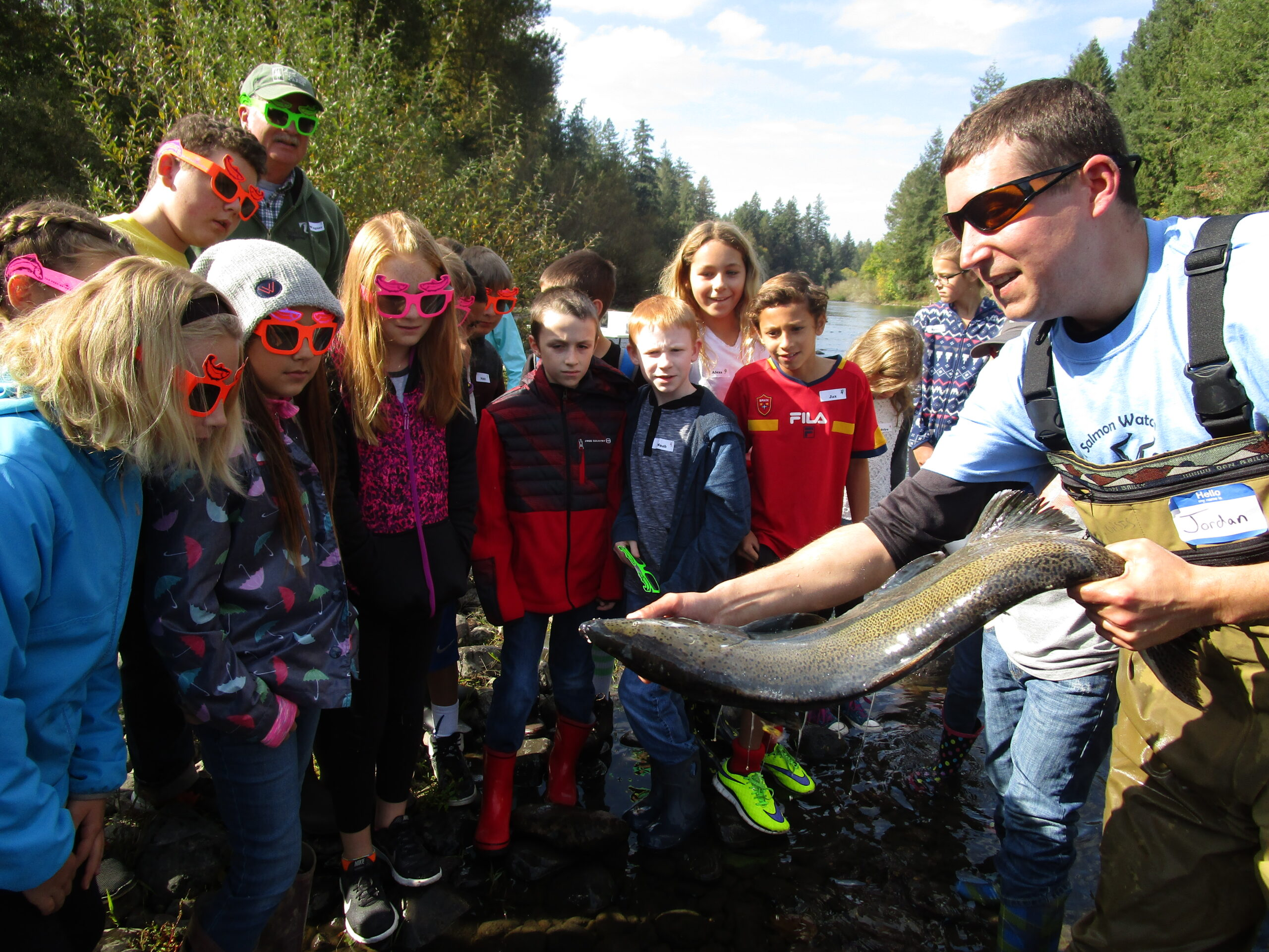 Students at Salmon Watch view a fresh salmon carcass.
